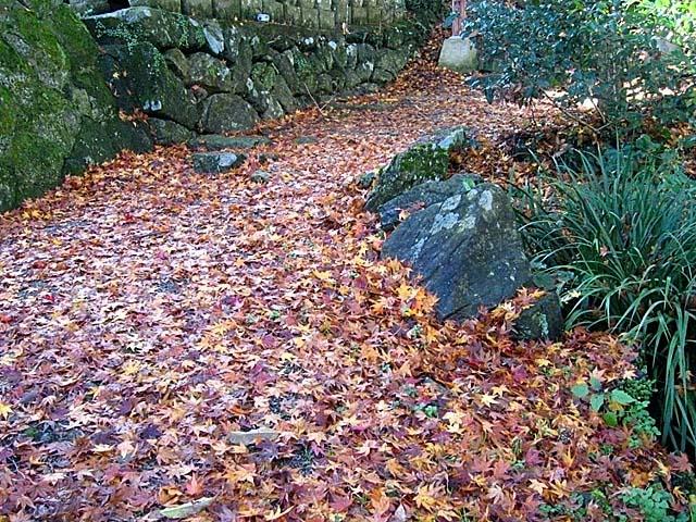 清水寺(きよみずでら)楓の落ち葉